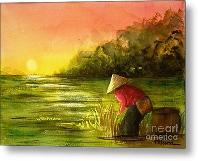 The Paddy Field Metal Print by Therese Alcorn