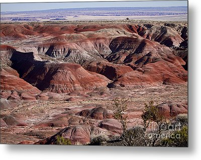 The Painted Desert  8062 Metal Print by James BO  Insogna