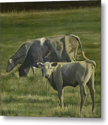 The Pasture Metal Print by John Reynolds