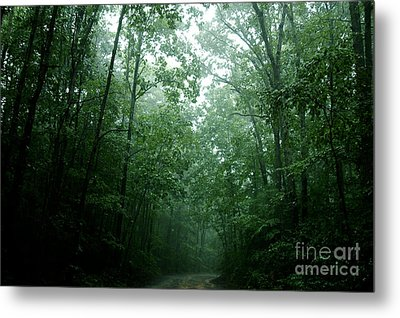 The Path Ahead Metal Print by Clayton Bruster
