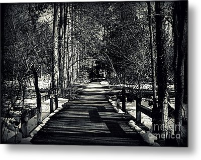 The Path Metal Print by Elizabeth Babler