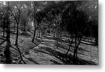 The Path In Abstract Metal Print