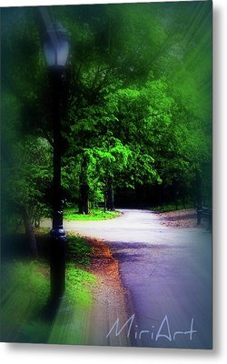 Metal Print featuring the photograph The Path by Miriam Shaw
