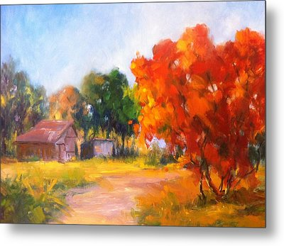 The Path Nearby Metal Print by Patricia Lyle
