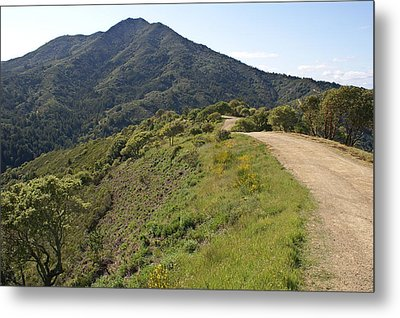 The Path To Tamalpais Metal Print by Ben Upham III