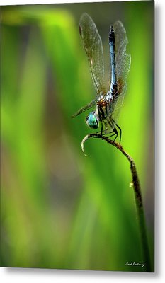 Metal Print featuring the photograph The Performer Dragonfly Art by Reid Callaway