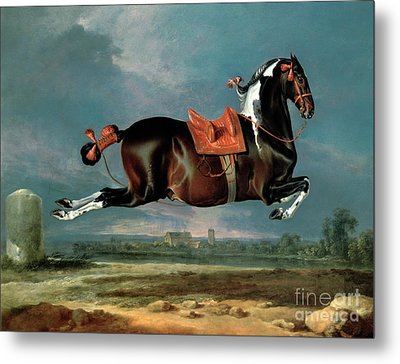 The Piebald Horse Metal Print by Johann Georg Hamilton