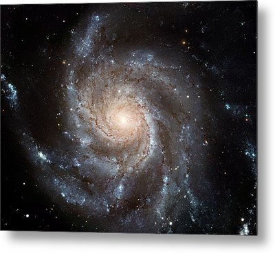 The Pinwheel Galaxy  Metal Print by Hubble Space Telescope