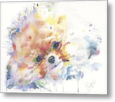 The Pomeranian Metal Print