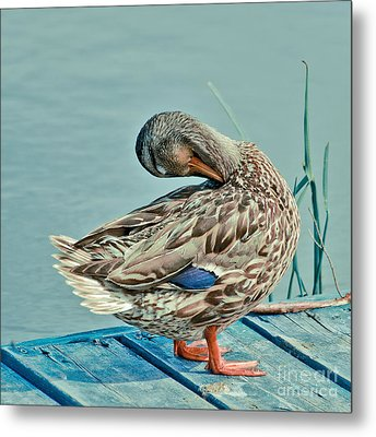 The Pose Metal Print
