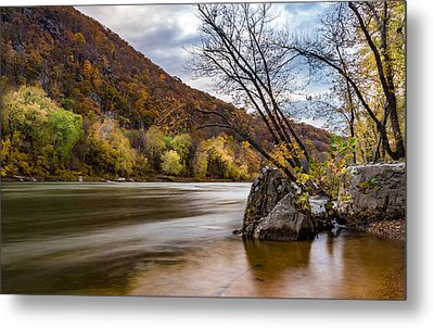 The Potomac In Autumn Metal Print by Ed Clark