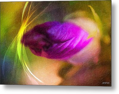 The Power Of Dreams Metal Print by Nicole Frischlich