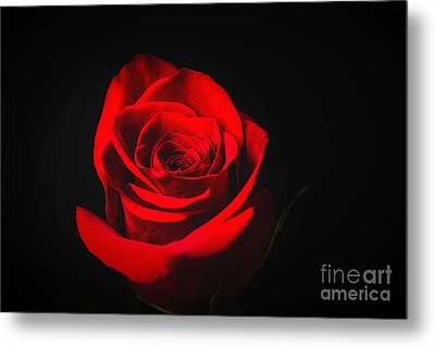 The Promise Of Love Metal Print