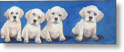 The Pups 1 Metal Print by Roger Wedegis