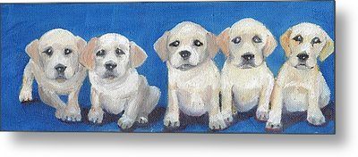 The Pups 2 Metal Print by Roger Wedegis