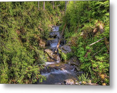 The Quinault Stream 2 Metal Print