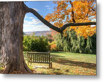 The Reading Bench Metal Print by Zev Steinhardt