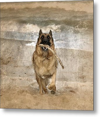 The Retrieve Metal Print