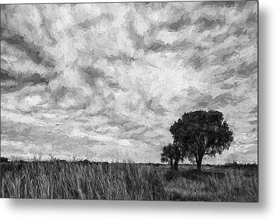 The Right Tree II Metal Print by Jon Glaser