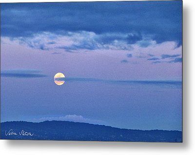 The Rising Metal Print by Sabine Stetson