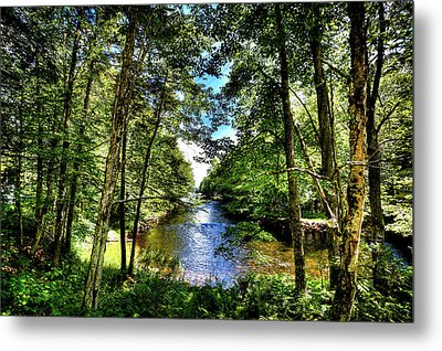 Metal Print featuring the photograph The River At Covewood by David Patterson