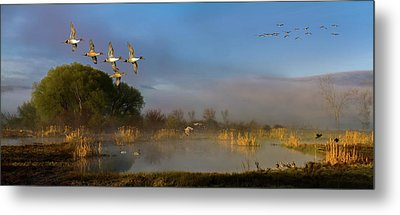 The River Bottoms Metal Print by TL Mair