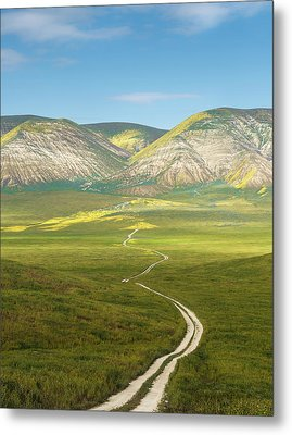 The Road Down Metal Print by Joseph Smith