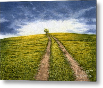 The Road Less Traveled Metal Print by Sarah Batalka