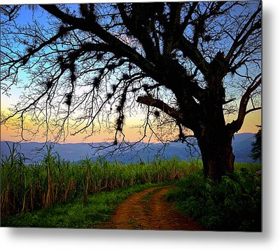 The Road Less Traveled Metal Print by Skip Hunt