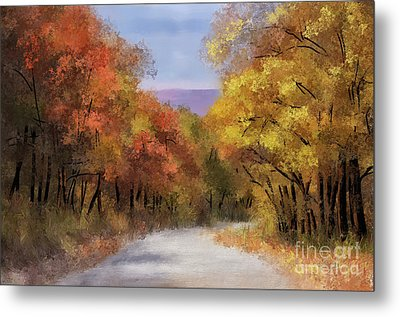 The Road To Blue Knob Metal Print