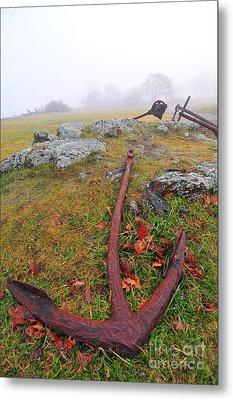 The Rusty Anchor  Metal Print by Catherine Reusch Daley