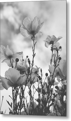 The Same Air You Breathe Metal Print by Laurie Search