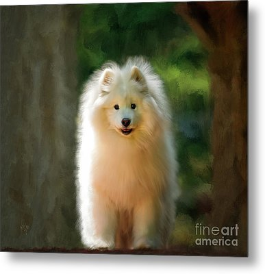 The Samoyed Smile Metal Print by Lois Bryan
