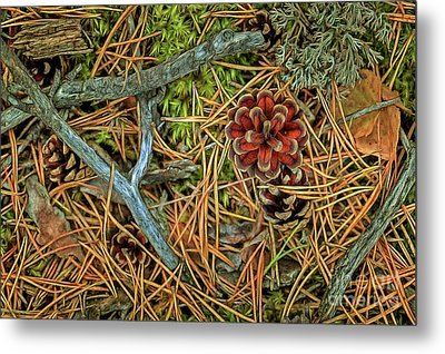 The Scent Of Pine Forest II Metal Print