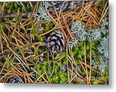 The Scent Of Pine Forest Metal Print