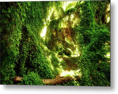 The Secret Garden, Perth Metal Print