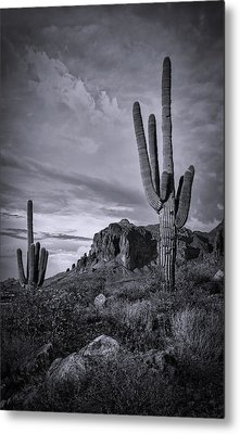 Metal Print featuring the photograph The Sentinels Of The Supes In Black And White  by Saija Lehtonen