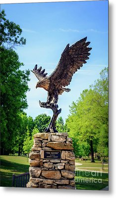 The Sentry At Honor Heights Park Metal Print by Tamyra Ayles