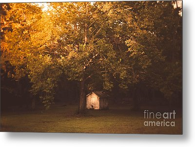 The Shack Metal Print by Andrea Anderegg