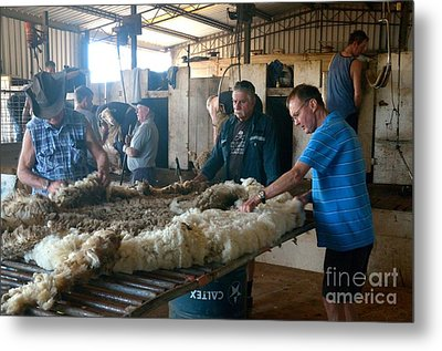 The Shearing Shed  Metal Print by Hans Peter Goepel