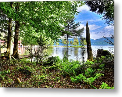 Metal Print featuring the photograph The Shore At Covewood by David Patterson