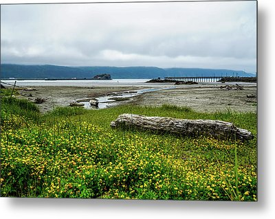 The Shoreline Metal Print