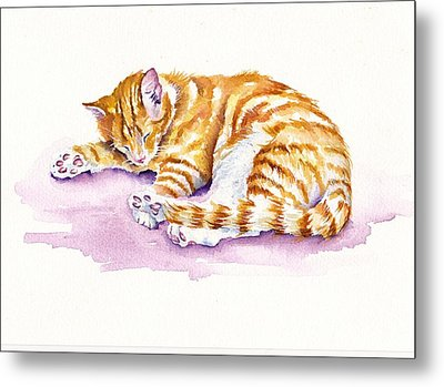 The Sleepy Kitten Metal Print by Debra Hall