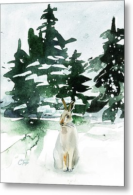 The Snow Bunny Metal Print by Colleen Taylor