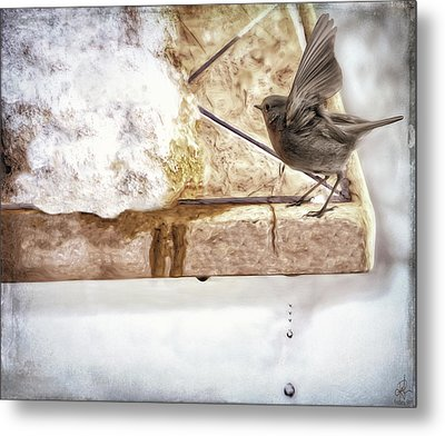 Metal Print featuring the photograph The Snow Melts by Pennie  McCracken
