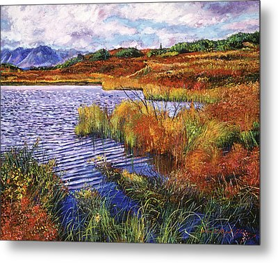 The Sound Of Wind Across The Lake Metal Print by David Lloyd Glover
