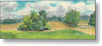 The South Field Metal Print by Terri  Meyer