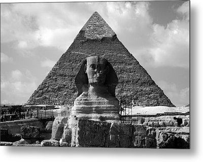 The Sphynx And The Pyramid Metal Print by Donna Corless