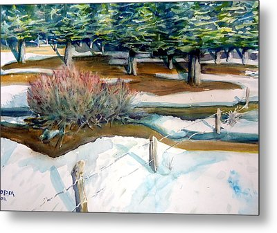 The Spring Thaw Metal Print by Steven Holder