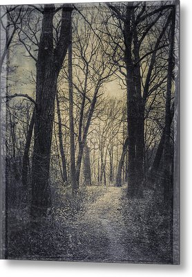 The Starting Point Metal Print by Scott Norris